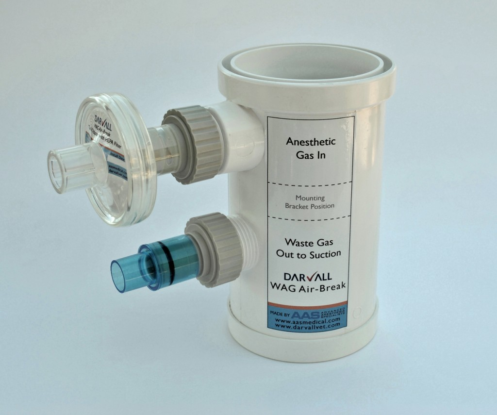 Wag Airbreaks Specifically Designed For Vets Aas Darvall