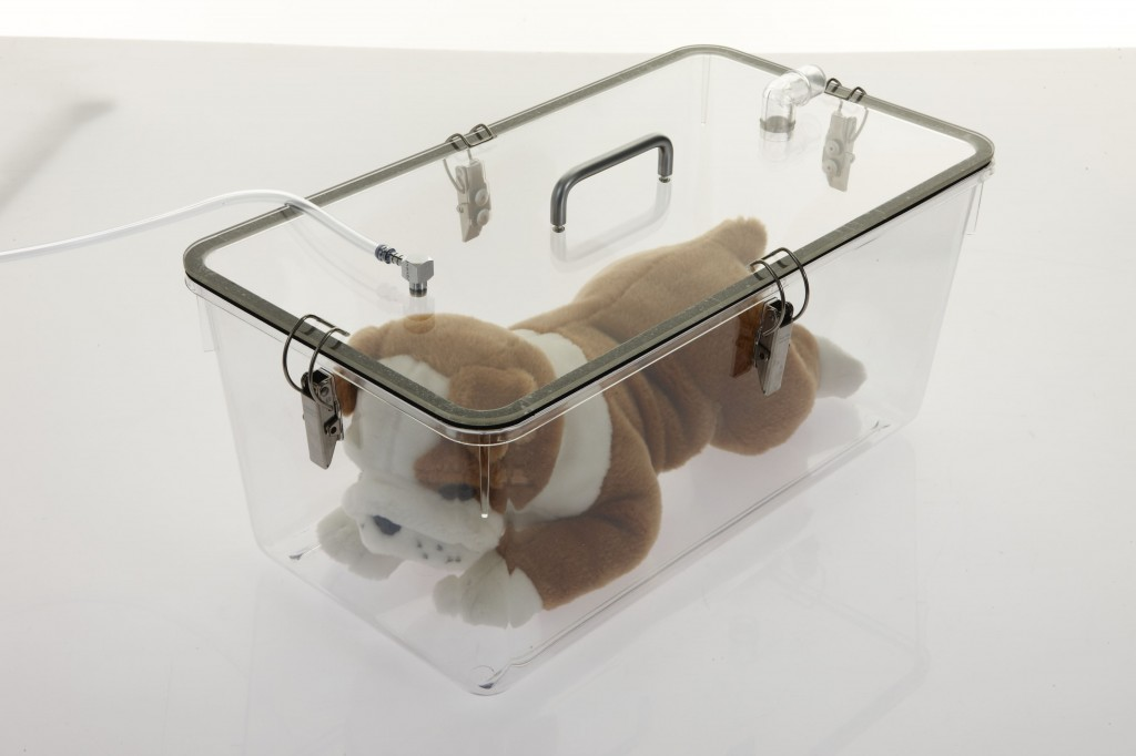 Induction Chambers Specifically Designed By Veterinarians